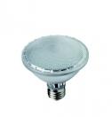Lampada a LED PAR 30 2