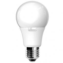 Lampadina LED Premium Goccia - 1